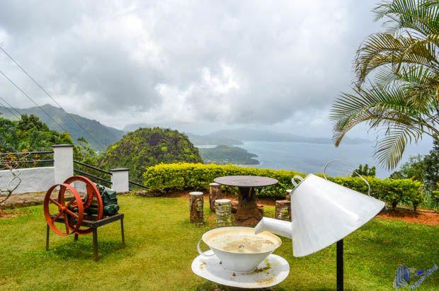 Jardim da Fábrica de Chá em Mahe-Seychelles