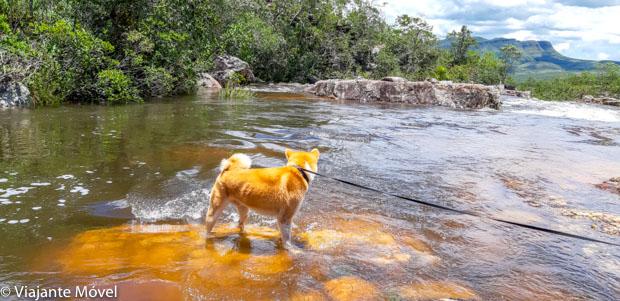 Quais cachoeiras da Chapada dos Veadeiros aceitam cachorro