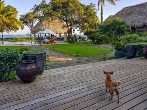 O que fazer em Placencia Belize