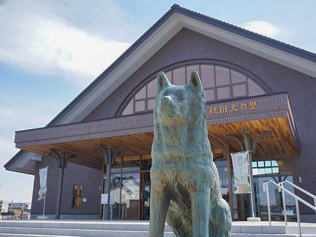 Estátua de Hachiko em Akita no Japão