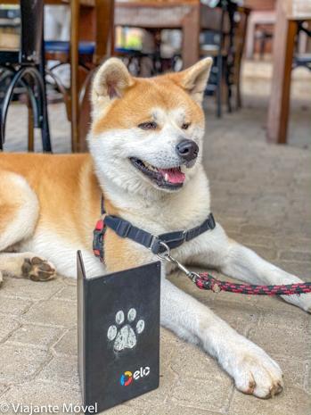 Dica de Restaurante pet friendly em Monte Verde