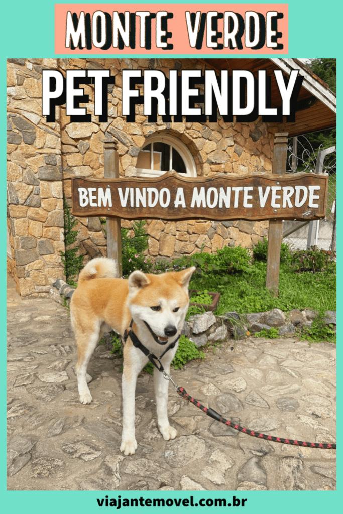 Monte Verde Pet Friendly : Dicas de passeios de um Akita