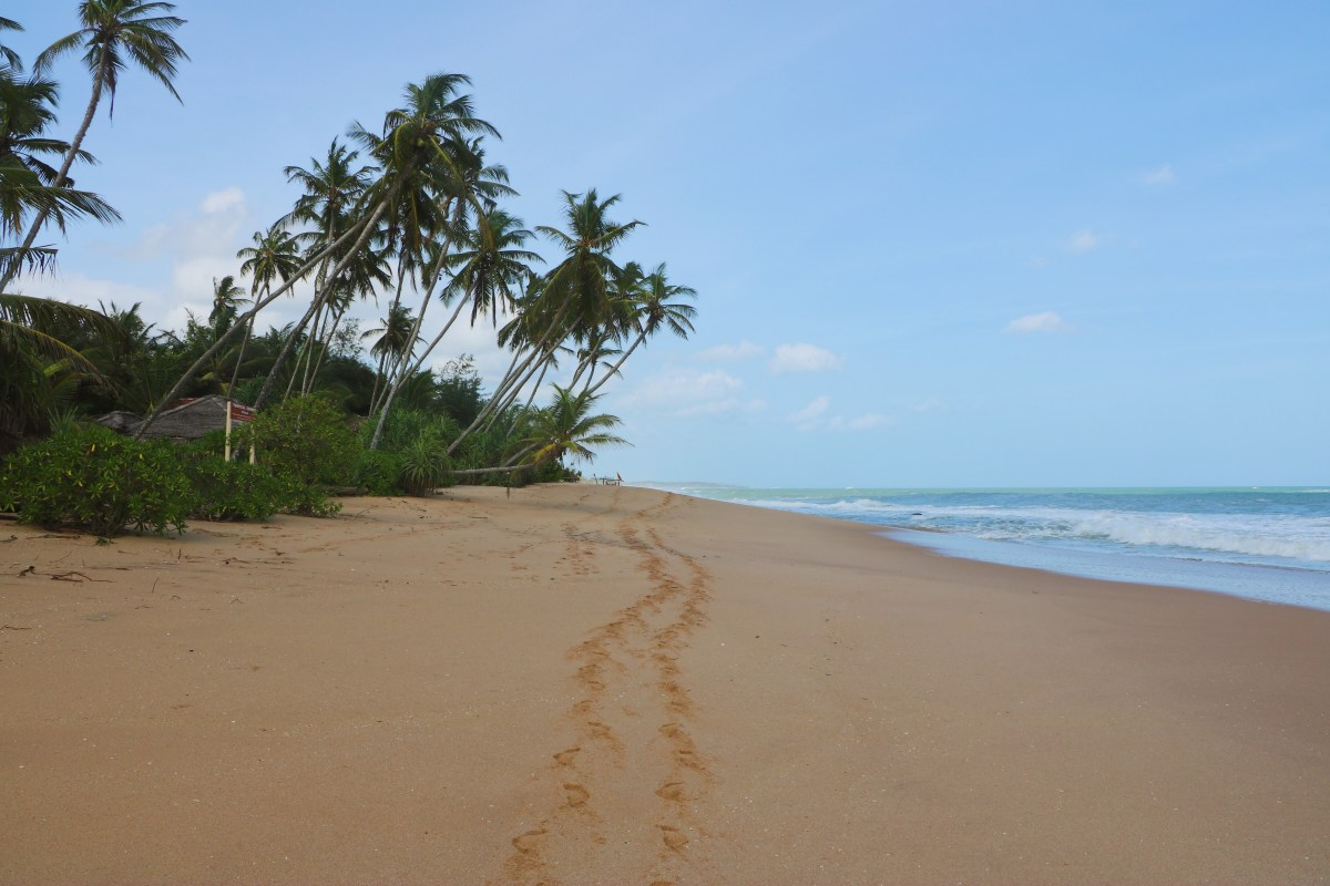 Playa de Marakoliya