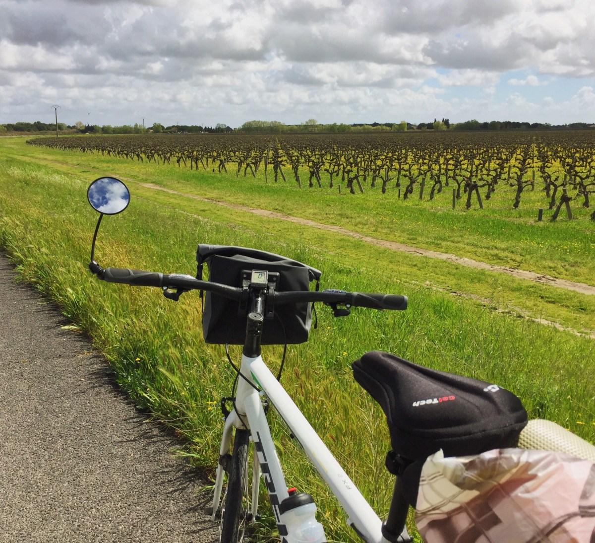 Mi bici en medio de la Provenza