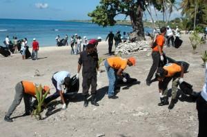 Voluntarios en acción en la playa de Bayahíbe