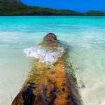 La Playa Rincon: Un Rincon En El Paraiso