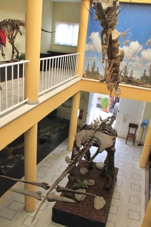 museu da lourinha andar cima