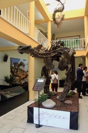 museu lourinha dinossauros