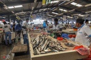 mercado pescado dubai