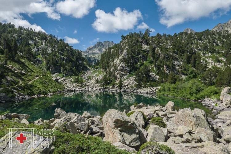 Gerber Pirineus