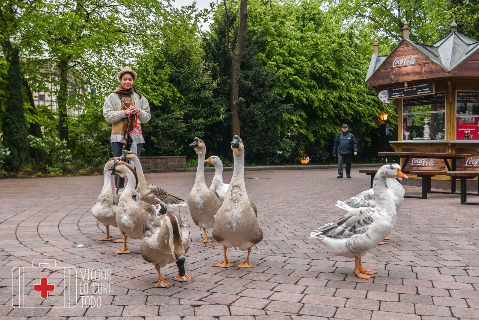 Europa Park animals