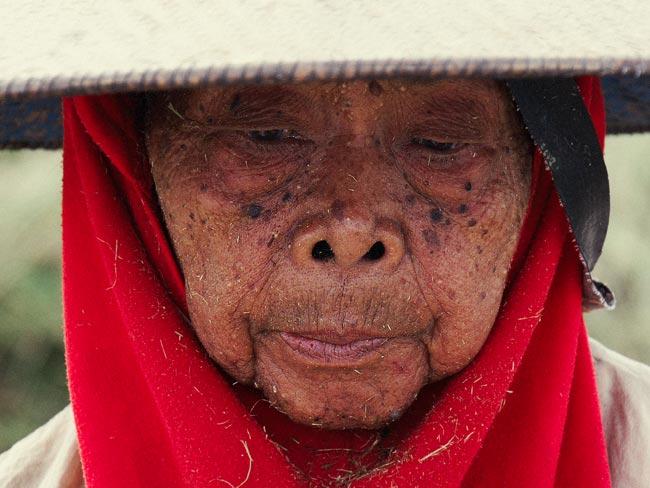 indonesia-por-libre4
