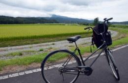 valle de tono japón