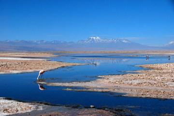 chile, desierto de Atacama