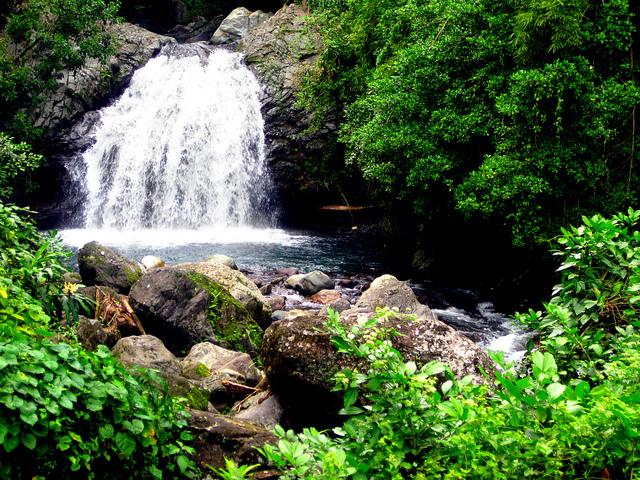Halconviajes_Jamaica