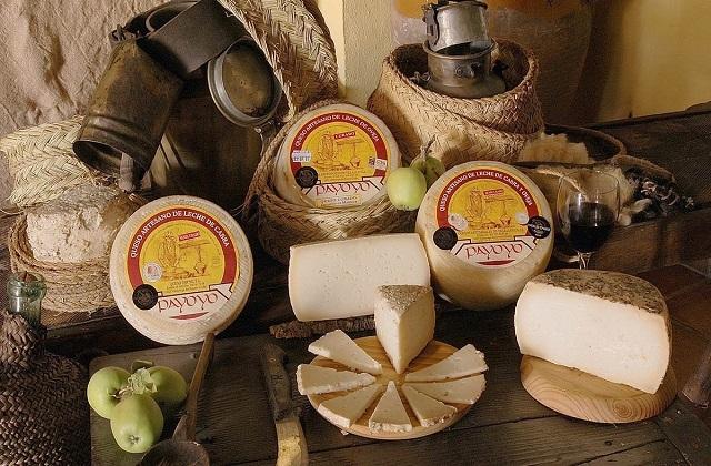 ¿Conoces el queso payoyo?