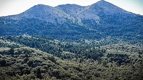 Las Navas Sierra de Las Nieves Ronda-198low
