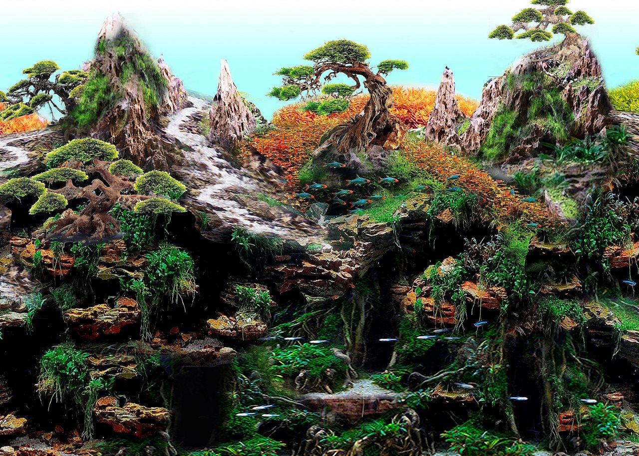 Jardín-Zen-2