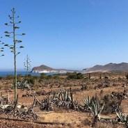 Las Marinicas, la playa que no puedes perderte en Almería