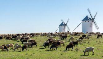 Molinos de la Mancha. Siguiendo al Quijote.