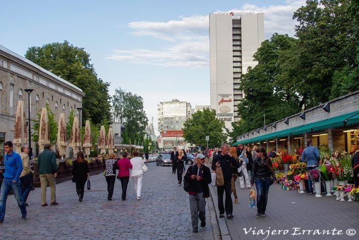 calles de Tallin
