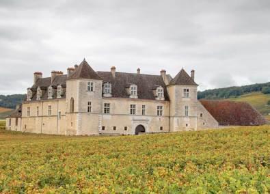 Viñedos de Borgoña
