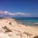 Disfruta aún más de tu viaje a Formentera