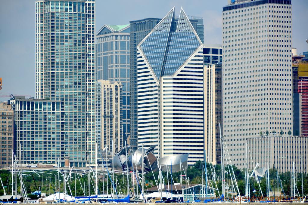 Chicago Millennium Park 5
