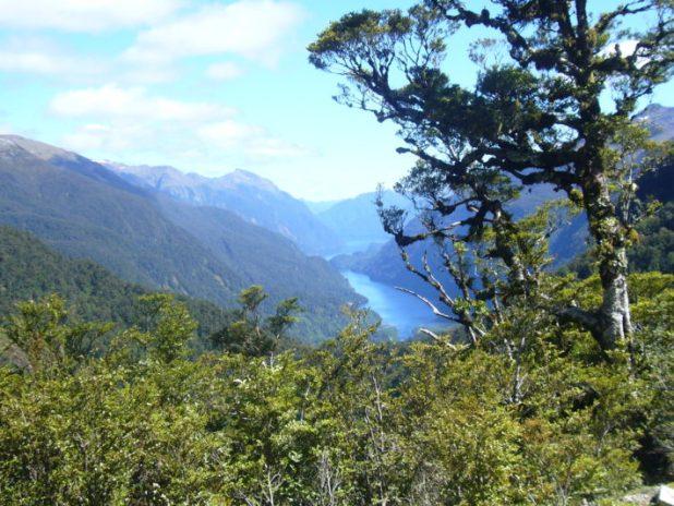 Doubtful Sound (Nueva Zelanda Isla Sur)
