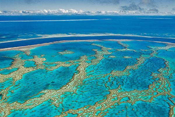 Barreras corales