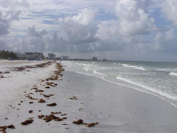 La playa de Siesta Key en Florida