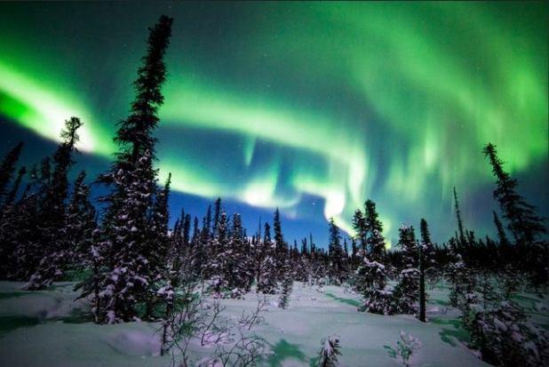 La Aurora Boreal en Denali (Alaska)