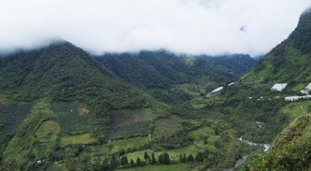 tobogan-casa-de-arbol-ecuador-5