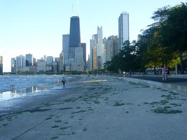 Lake front Track