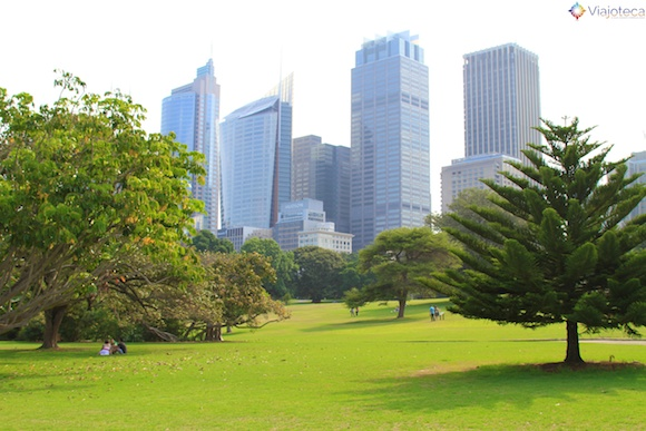 Jardim Botânico de Sydney1