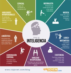Clases de inteligencia