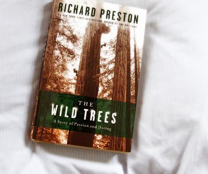 Wild Trees cover