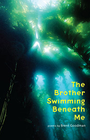 The Brother Swimming Beneath Me cover