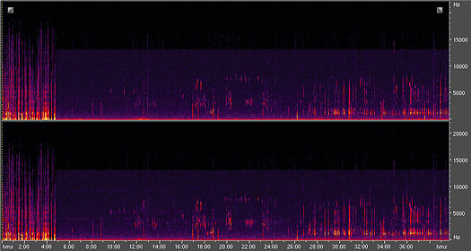 spectral frequency display of this podcast