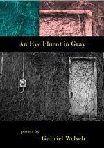 An Eye Fluent in Gray cover