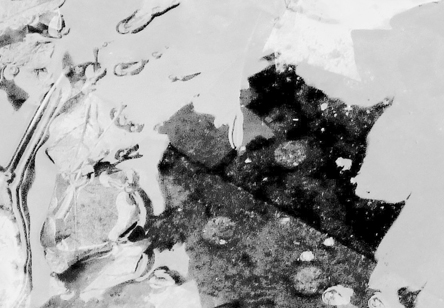 abstract black-and-white photo of water by Jean Morris