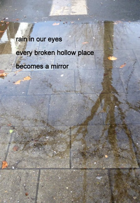 "A bare tree reflected in a puddle with this haiku printed on top: ""rain in our eyes / every broken hollow place / becomes a mirror"""
