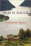 cover of Luminous Spaces
