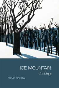 Ice Mountain cover