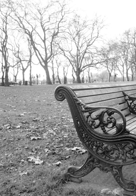 Black-and-white photo of the end of a park bench with a wide open space behind it and a line of trees in the distance.
