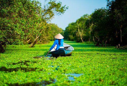 Viaje Sur De Vietnam Con Crucero Romántico