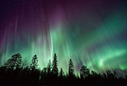 Viaje Laponia - Tras la Aurora Boreal Premium
