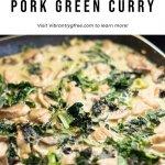Pork Green Curry Pin 4