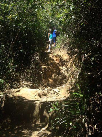 Trilha do Pico da Tijuca. Foto: Marcelle Ribeiro