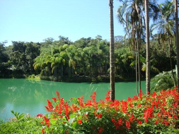 Lago do circuito laranja, em Inhotim. Foto: Marcelle Ribeiro